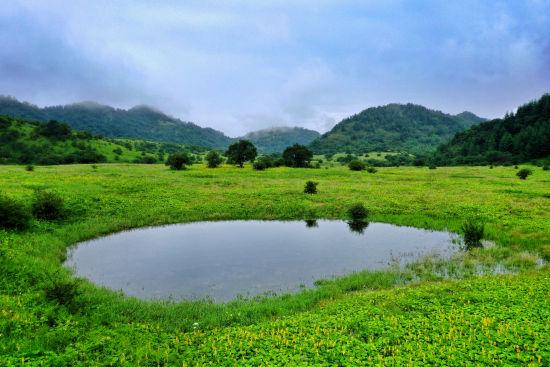 圖為重慶五里坡國家級自然保護區。肖江川 攝