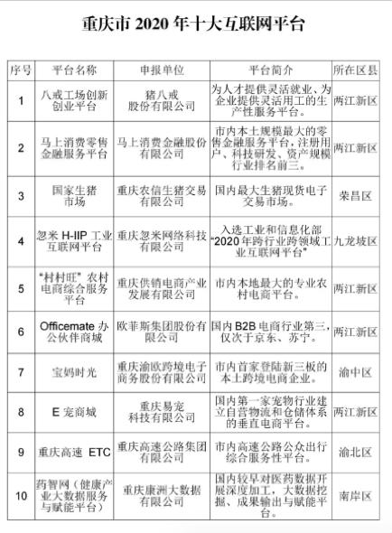 图为重庆市2020年十大互联网平台。主办方供图