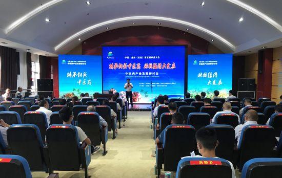 图为中医药产业发展研讨会现场。肖江川 摄