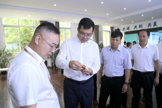图为重庆云阳县委书记覃昌德走访了解企业生产经营情况。云阳县委统战部供图