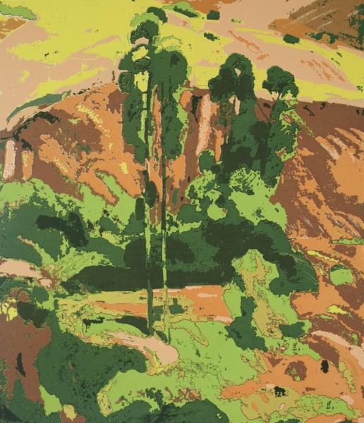 《绿树·红土》 60×52cm 丝网版画 2004年