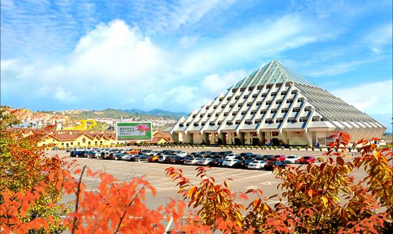图为仙女山国家级旅游度假区。主办方 供图