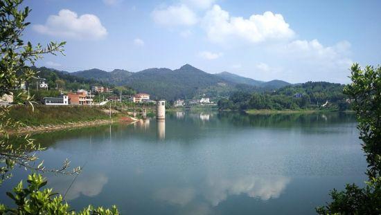 铜梁围龙镇:以桥亭湖为重点深度治理农村人居环境建设