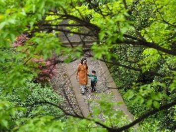 重庆山城步道绿意浓